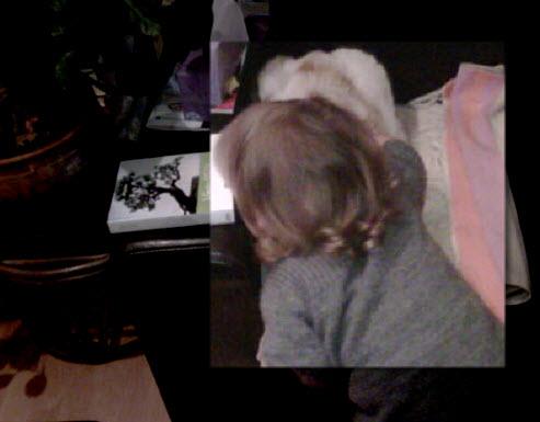 Jeux d'enfants: La petite fille et son chat